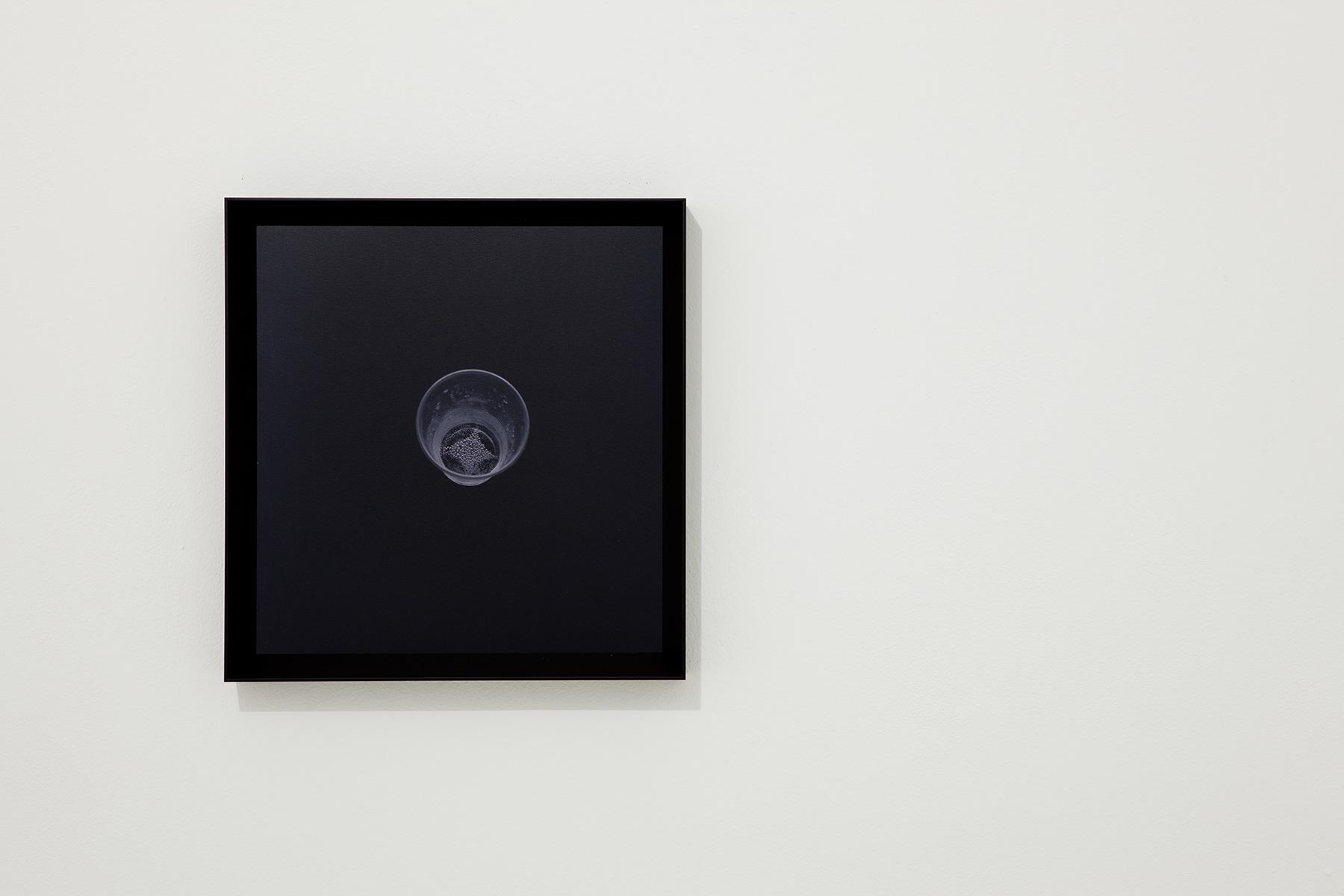 01-graziano folata -rising star - stampa fotografica digutale da negativo fotografico - 40x40cm-ed6-2012