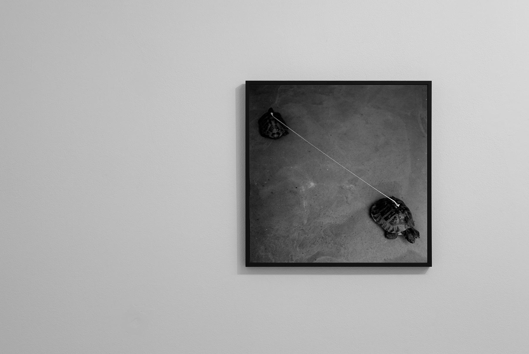 09-graziano-folata-slow-distance-stampa-fotografica-fine-art-digitale-da-negativo-analogico-50x50-ed6-2013-ab-ph-mauro-prandelli