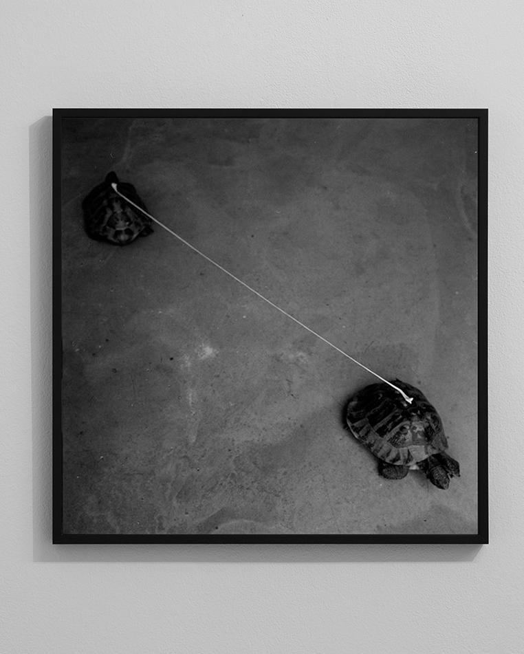 09a-graziano-folata-slow-distance-stampa-fotografica-fine-art-digitale-da-negativo-analogico-50x50-ed6-2013-ab-ph-mauro-prandelli