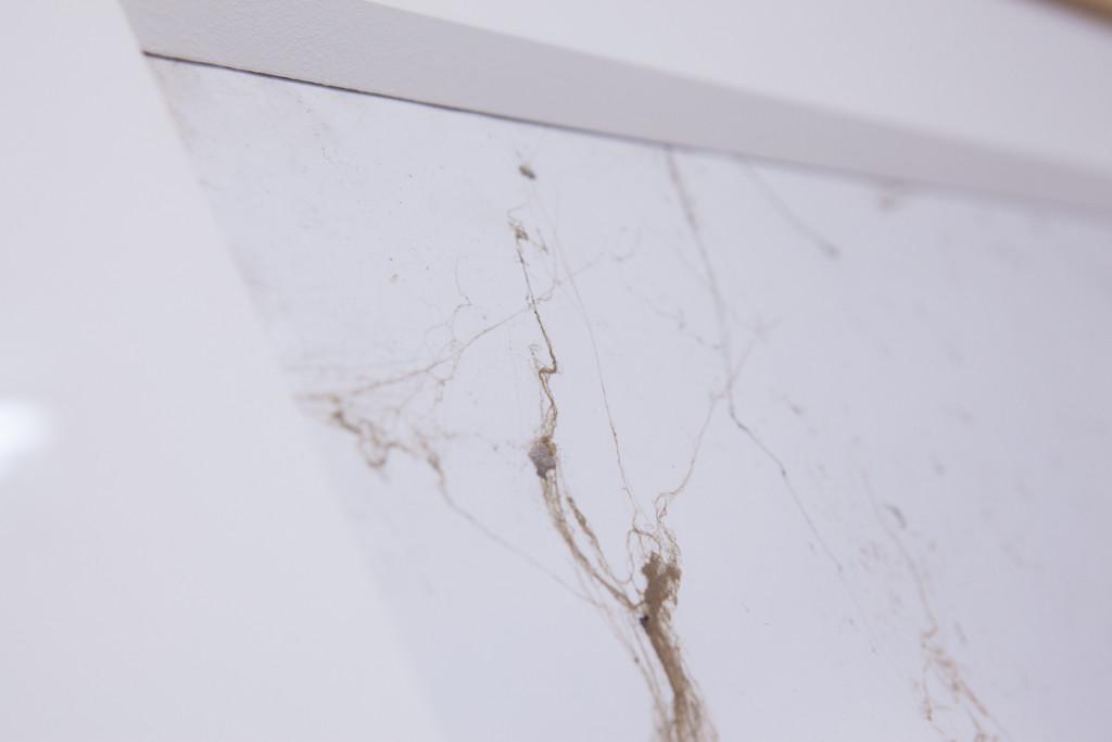 2. Emanuele Becheri, Impressioni #7, part. spider webs on adhesive paper, 100x70cm, 2010